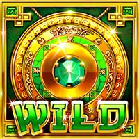 Wild Symbol for Slots